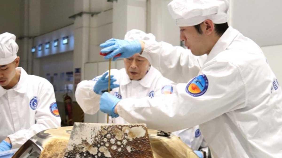 நிலவில் காய்கறிகளை பயிரிட நினைத்த சீனாவின் முயற்சி தோல்வி. Photo China Space News